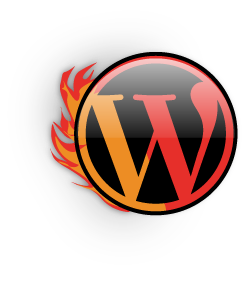 visual blaze custom wordpress blogs